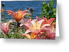 Colour At The Lake Greeting Card