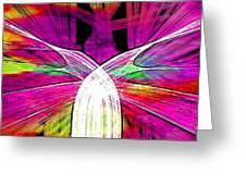 Colour Fabrics Painting Greeting Card