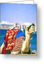 Colourful Camel Greeting Card