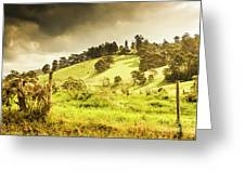 Colourful Fields And Farmyards Greeting Card