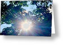 Colourful  Sunburst Greeting Card