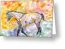 Colt In The Field Greeting Card