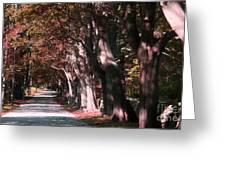 Colt State Park Bristol Rhode Island Greeting Card