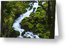 Columbia Gorge 1 Greeting Card