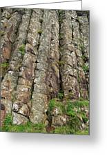 Columns Of Giants Greeting Card