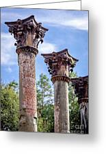 Columns Of Windsor Ruins Greeting Card