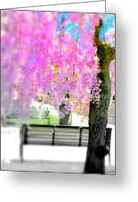 Come Sit By The Cherry Blossoms Greeting Card