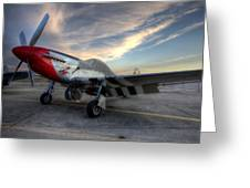 Comfortably Numb Buttoned Up For The Night At The Hollister Airshow Greeting Card