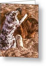 Comforting The Heifer With A Broken Leg Greeting Card