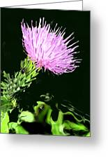 Common Weed Greeting Card