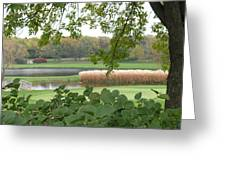 Como Park Golf Course In The Fall Greeting Card