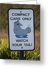 Compact Cars Only Sign Greeting Card