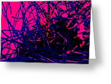 Complex Abstract Greeting Card