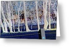Composition Of Trees Greeting Card