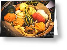 Composition Of Various Gourds In A Basket With Vignetting Greeting Card