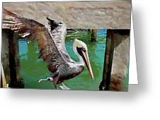 Concrete Pelican Greeting Card