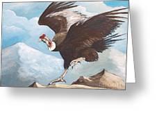 Condor Greeting Card