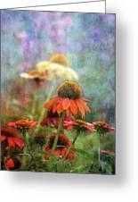 Coneflower Garden 2789 Idp_2 Greeting Card