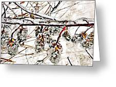 Cones-icicles. Greeting Card