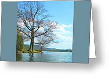 Cone's Point Greeting Card