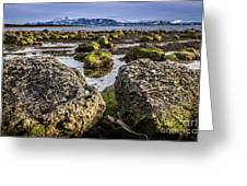 Conglomerate Boulders, Green Point, Nl Greeting Card