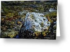 Conglomerate Ice Greeting Card