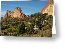 Coniferous Trees In The Garden Of The Gods Greeting Card