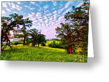 Conley Road Meadow, Oaks, Barn, Spring  Greeting Card