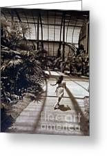 Conservatory, Barcelona 1976 Greeting Card