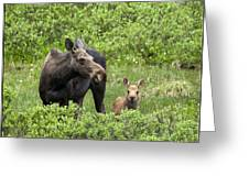 Consoling Mom Greeting Card