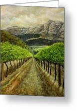 Constantia Uitsig Vines Pleine Aire Greeting Card