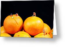 Construction On Oranges Greeting Card by Paul Ge
