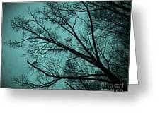 Contrasted Trees Greeting Card
