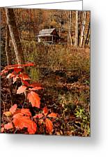 Cook Cabin Greeting Card