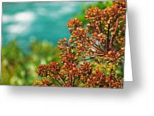 Cool Colors Greeting Card