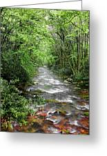 Cool Green Stream Greeting Card