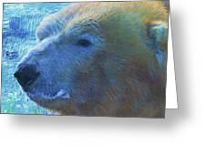 Cool Polar Bear Greeting Card