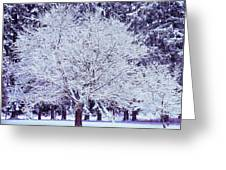Cool Sunset Essence Of Winter Greeting Card