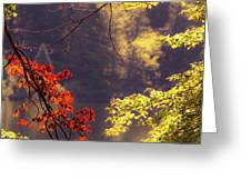 Cool Vermont Autumn Day Greeting Card
