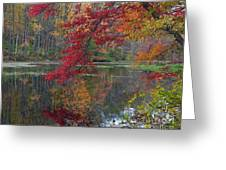 Cooper Mill Pond Greeting Card