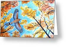 Cooper's In Autumn Greeting Card