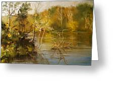 Coosa River In The Fall Greeting Card