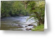 Coosawattee River Greeting Card