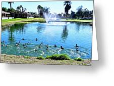 Coots On The Run In A Lake Greeting Card