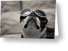 Copilot Greeting Card
