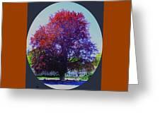 Copper Birch Greeting Card