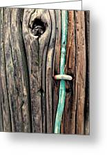 Copper Ground Wire And Knothole On Utility Pole Greeting Card