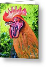 Copper Maran French Rooster Greeting Card
