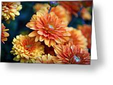 Copper Mums Greeting Card