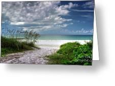 Coquina Beach-bradenton Florida Greeting Card